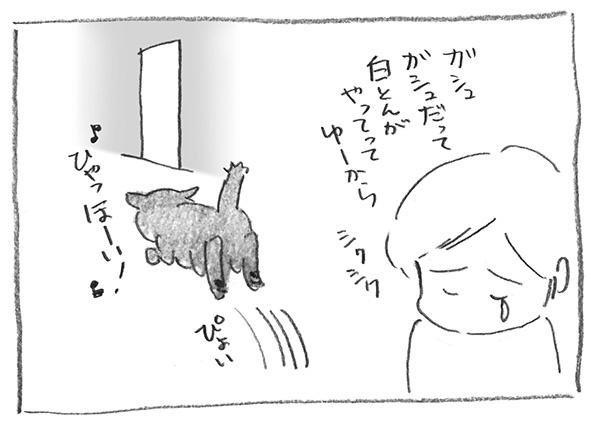 8-0418しくしく