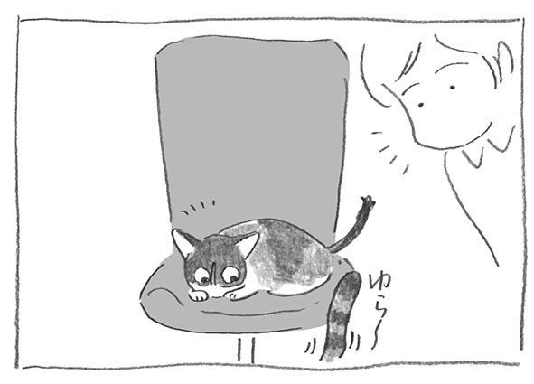 5-0425尻尾ゆら〜