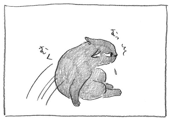 3-0429むく