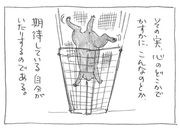8-0519期待