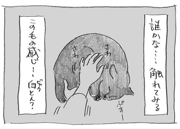 3-0522誰かな