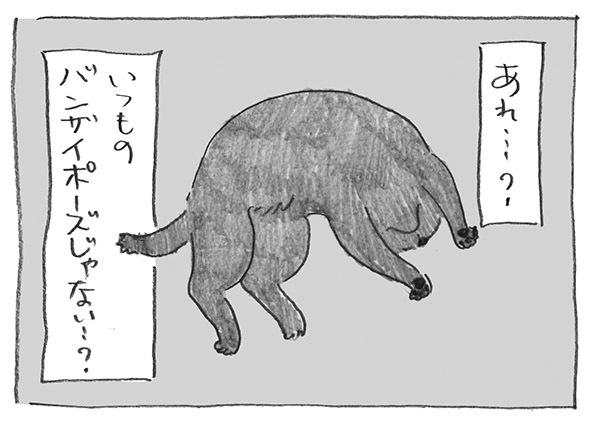 4-0522バンザイ