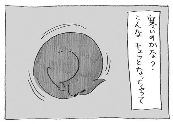 5-0522寒いのか