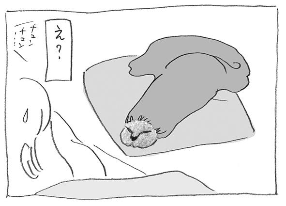 11-0522なまこ