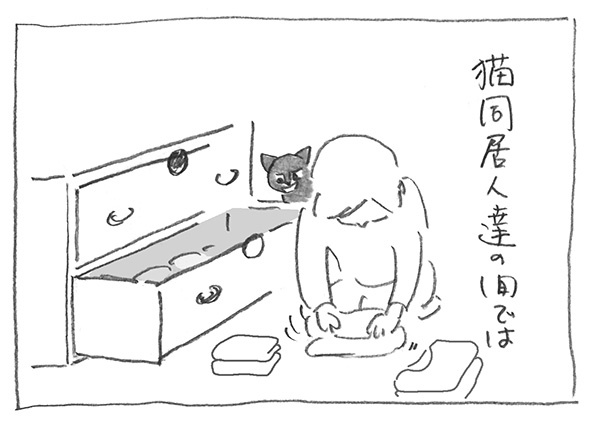 2-0523猫同居人