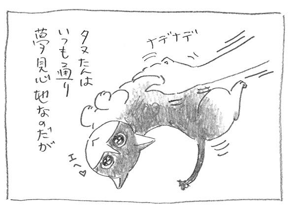 2-0628夢見心地