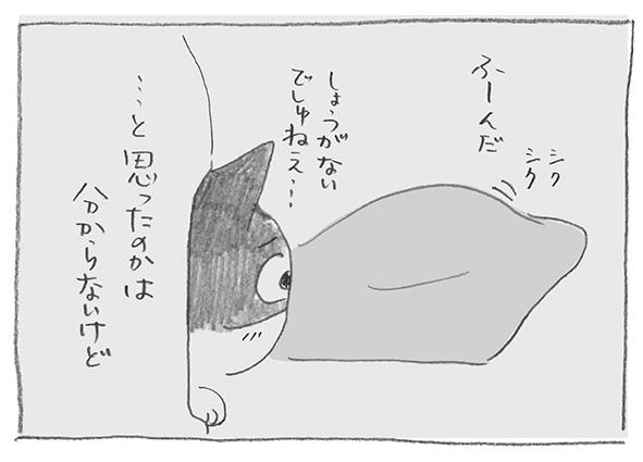 7-0630ふーんだ