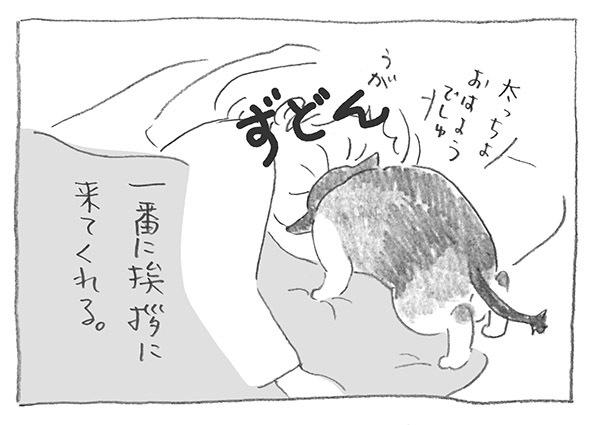 9-0630おはよ