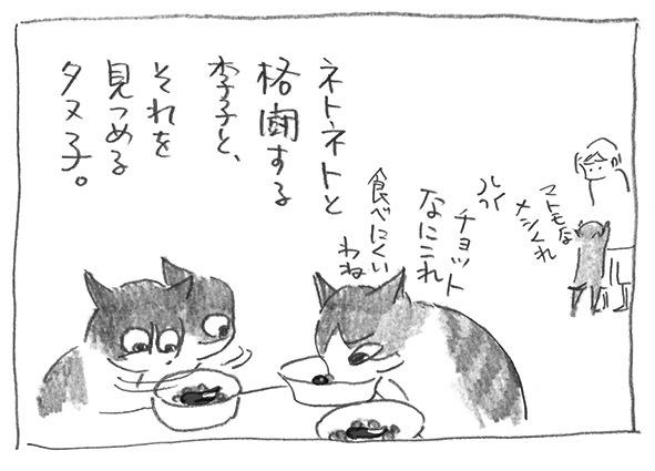 5-0715格闘李子