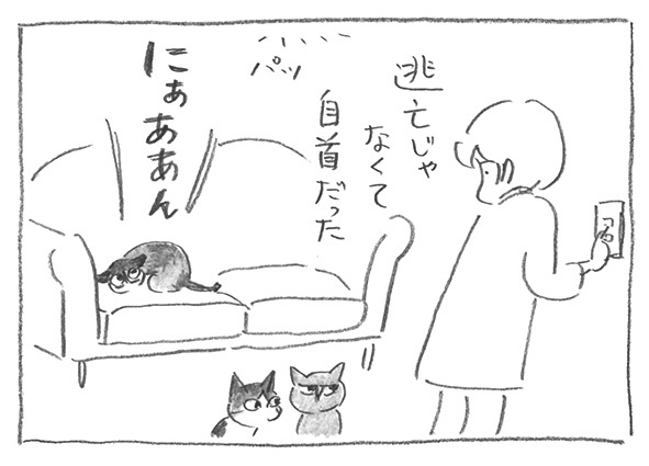 8-0724自首