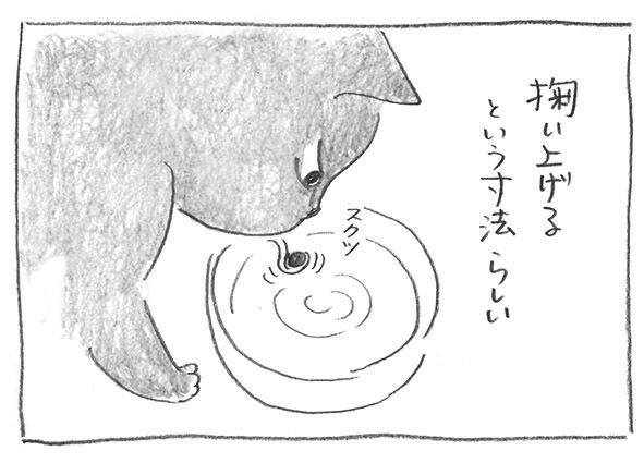 11-0731掬い上げる