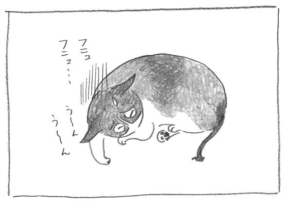 2-0802ふにゅ