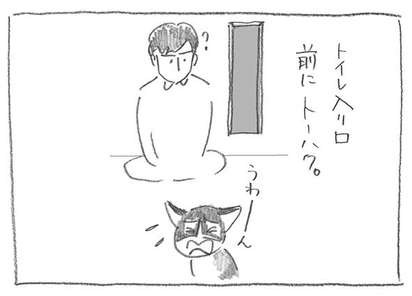 11-0802トーハク