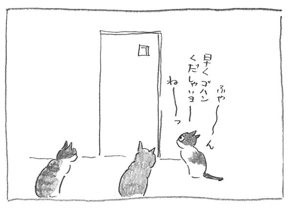 6-0804早く〜