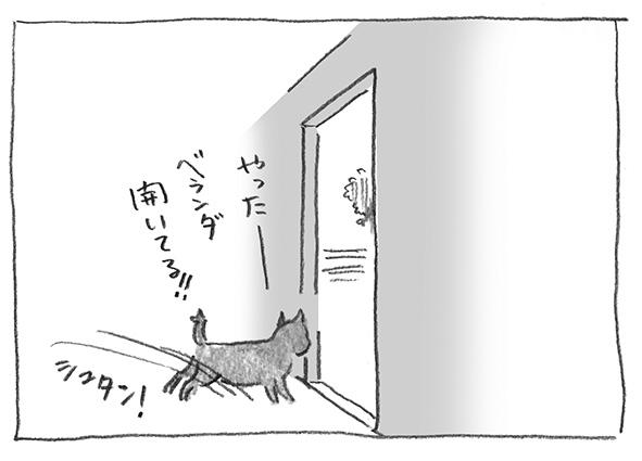 6-0429.jpg