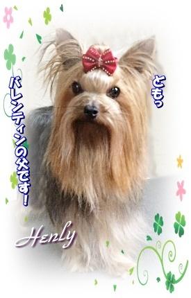 henry3.jpg