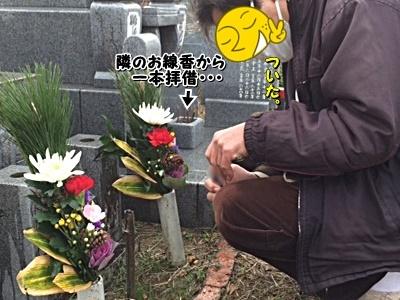 ohaka2_20201230153725932.jpg