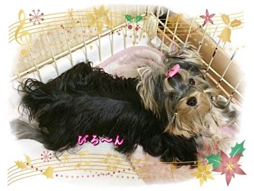 tsuki10_202012221835192f7.jpg