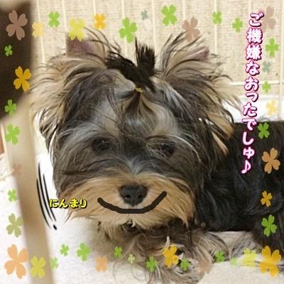 tsukicyan3_20200914184915981.jpg