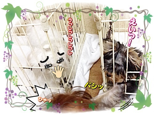 tsukihime1.jpg