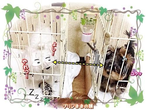tsukihime3.jpg