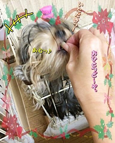 tsukiringo.jpg