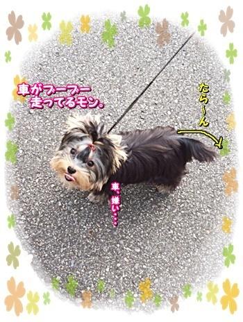 tsukisama2.jpg