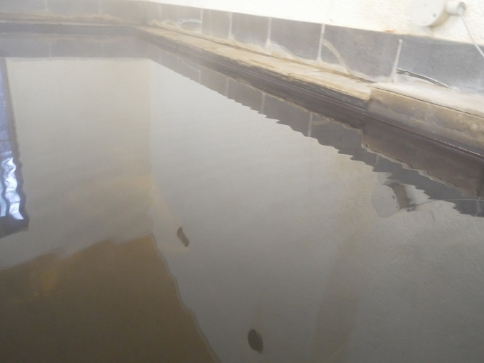 姥子温泉芦ノ湖一の湯