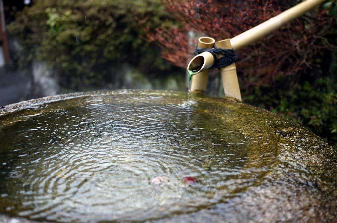 ゆとろ 嵯峨沢の湯