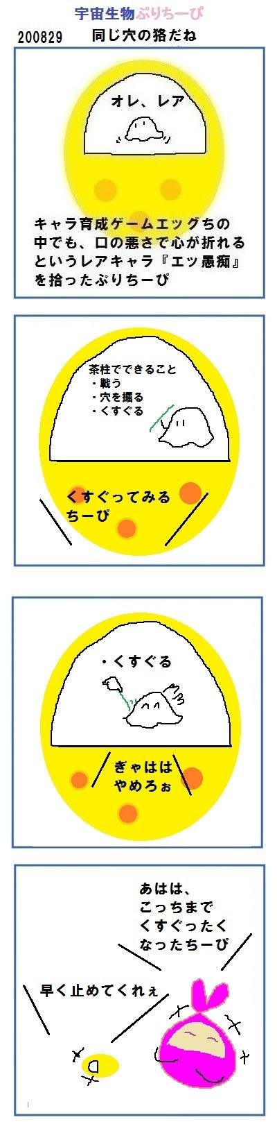 200829egg_pry.jpg