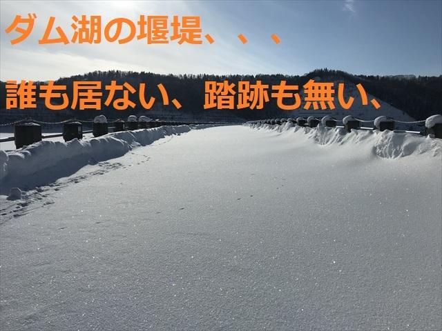 IMG_3810R03.jpg