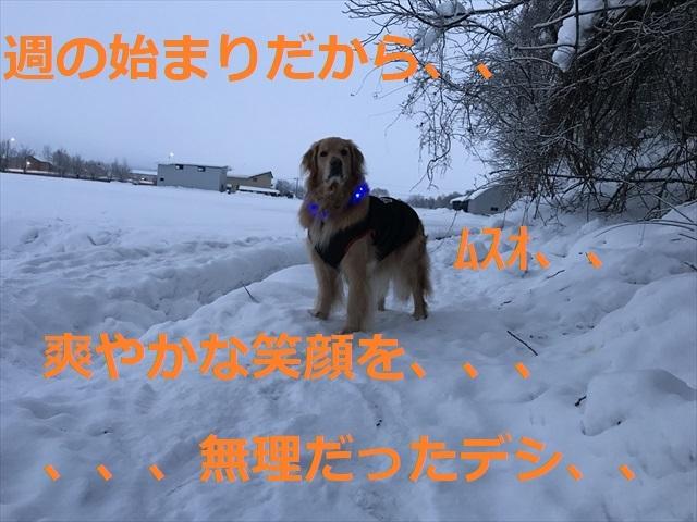 IMG_3898R03.jpg