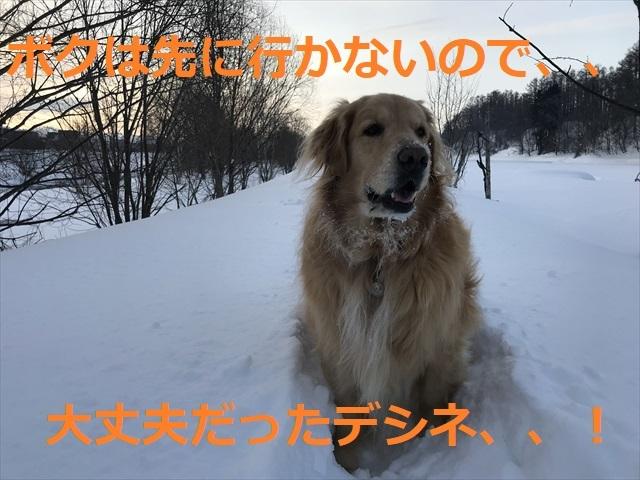 IMG_6439R03.jpg