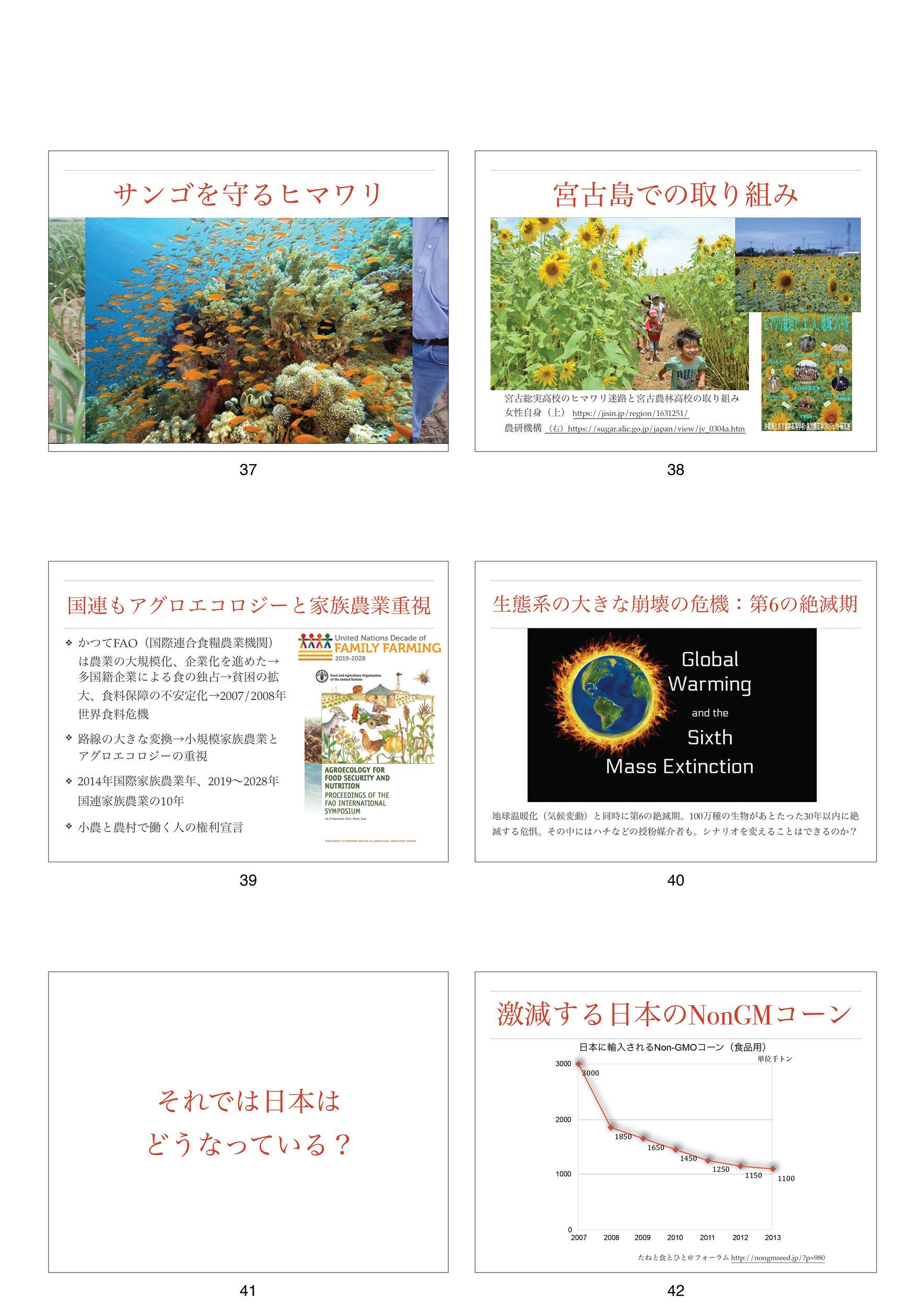 2020 0315宮古島勉強会_008