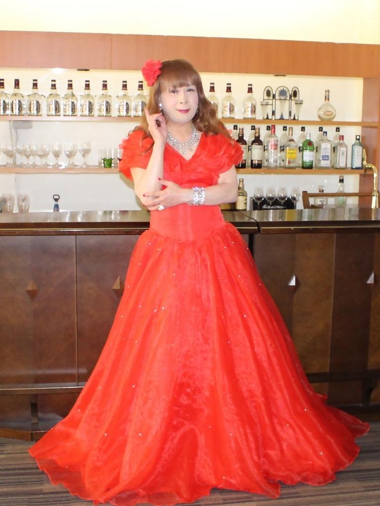 赤ドレスガーデンバレスA(1)