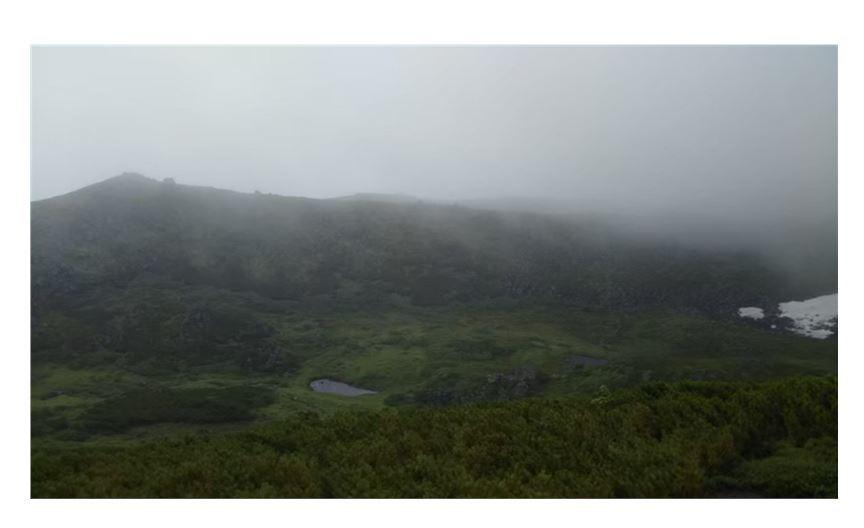 9登山道からのトムラウシ公園