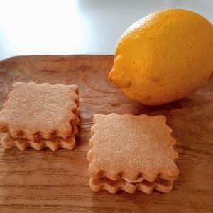 レモンクッキーのバタークリームサンド