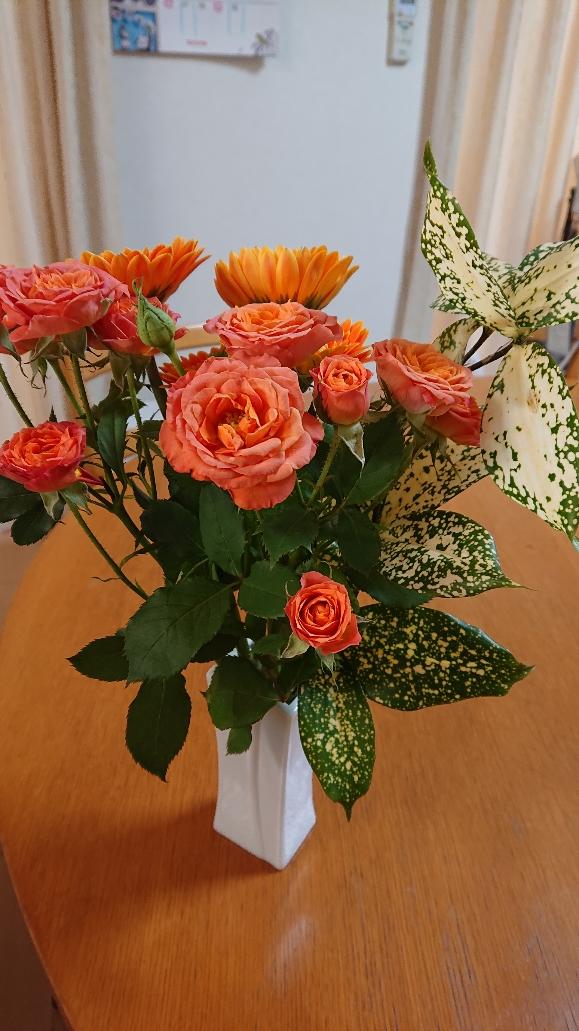 花屋 オレンジ薔薇