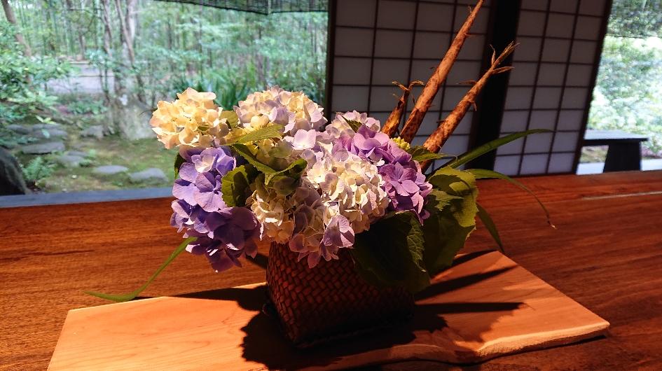 紫陽花生け花