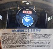 c5856-b.jpg
