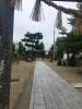 神社_200721_7