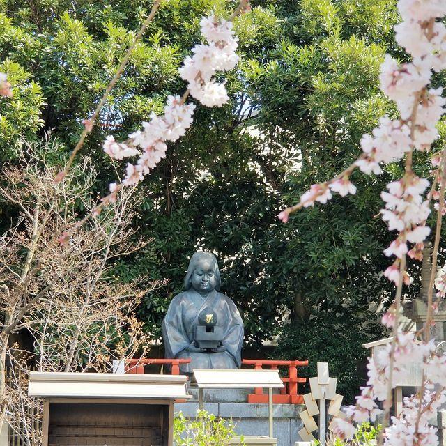 早咲き桜7