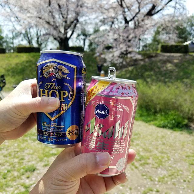 京都桜0404(小)_006