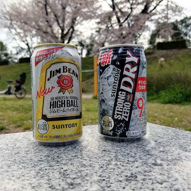 京都桜0404(小)_008
