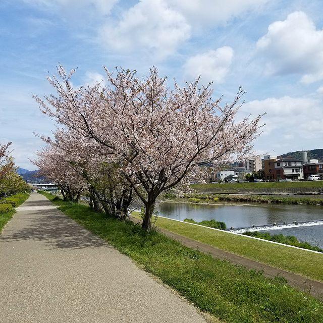 散歩(小)_009