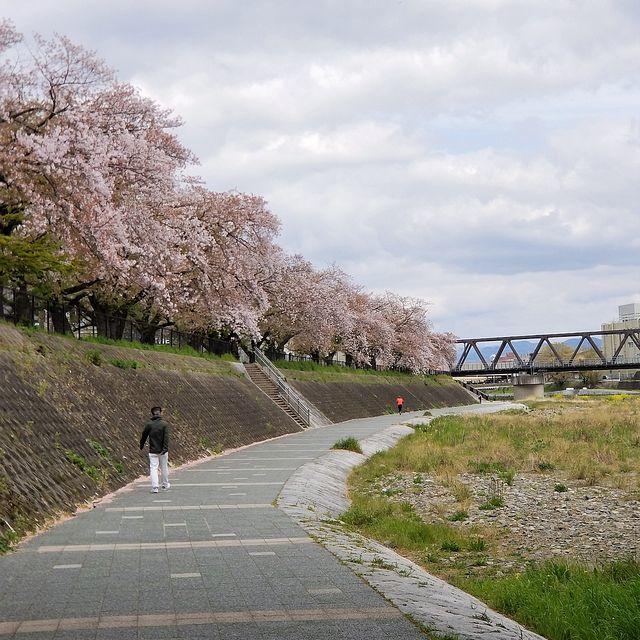 散歩(小)_013
