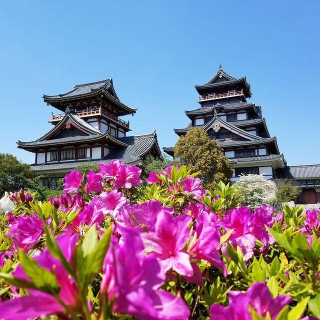 伏見桃山城でコートレット_001