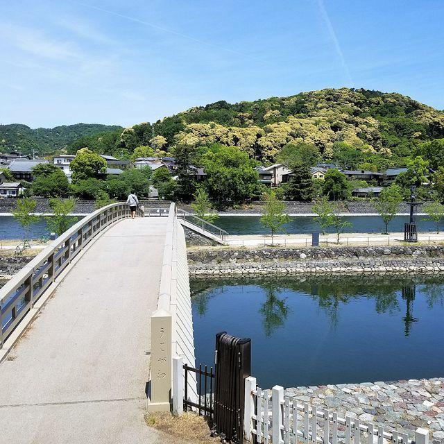 流れ橋ポタリング(小)_013