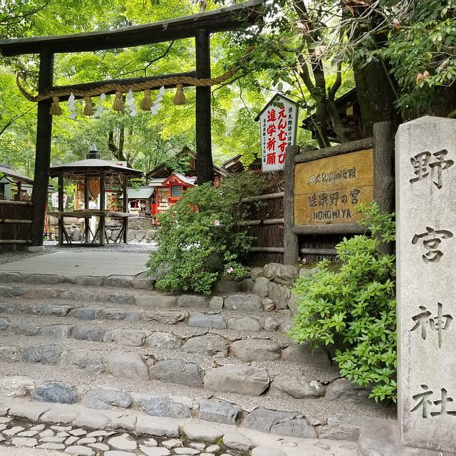 嵐山ポタ(小)_002