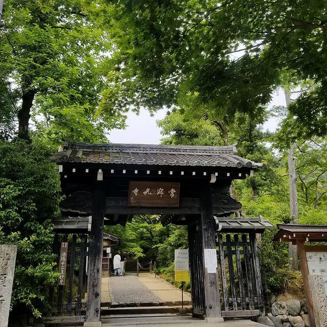 嵐山ポタ(小)_004